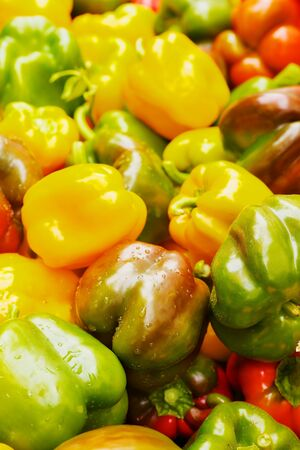 Many Color Bell Peppers at the farmers market with sharp focus on center vegetables