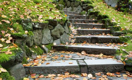 outdoor downward leading steps outdoor in a park with a shallow DOF