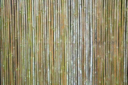 old weathered vertical bamboo wall or curtain Banco de Imagens