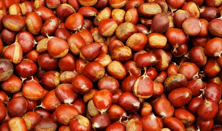 Pile of Brown Chestnuts at the farmers market Banco de Imagens