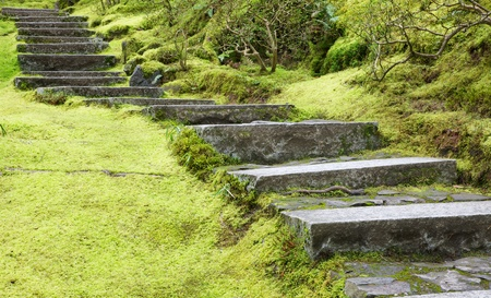 Asian Garden Flat Stone staircase and surrounding green grass and trees Banco de Imagens - 18737331