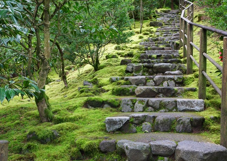 Asian Garden Stone staircase with wood railing and surrounding green grass and trees Banco de Imagens