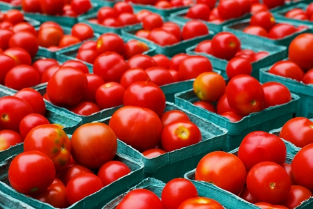 Rows of red ripe tomatoes in blue boxes at the farmers market Banco de Imagens - 21498284