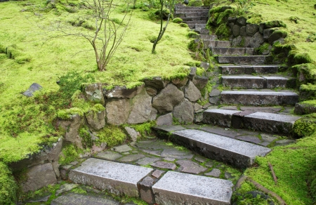 Ascending Curved garden stone stairs bordered with green moss