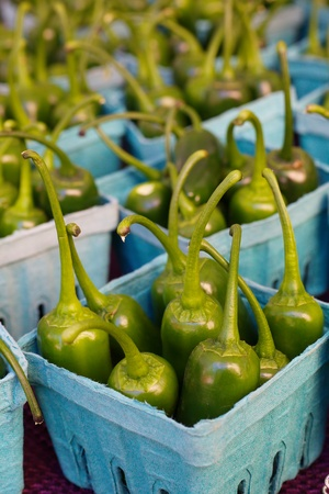 Rows of green Jalapeños standing in individual boxes at the farmers market Banco de Imagens - 21498288