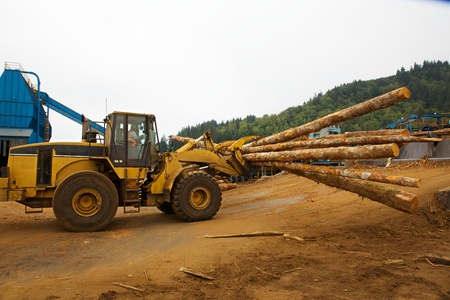 Logging forklift claw moving timber photo
