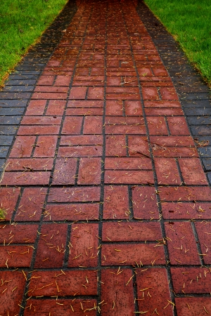 Red Brick path on lawn bordered by grass and diminishing at the top Banco de Imagens - 21498310