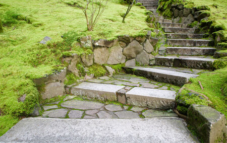 Curving stone stairway with surrounding moss covered grounds Banco de Imagens - 29655318