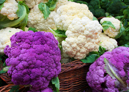 lila: White and Purple Cauliflower in a straw basket at the Farmers market