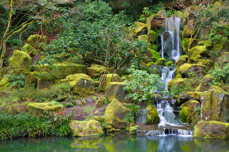 Asian Garden Waterfall flowing into a still pond surrounded by moss covered rocks, trees, and other foliage photo