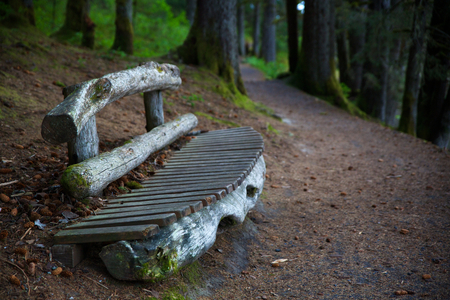 Alaskan Trail Bench in perspective with diminishing focus in Abercrombie Park Banco de Imagens