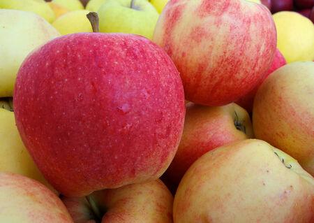 Pile of Gala Apples at the Farmers market Banco de Imagens - 29987826