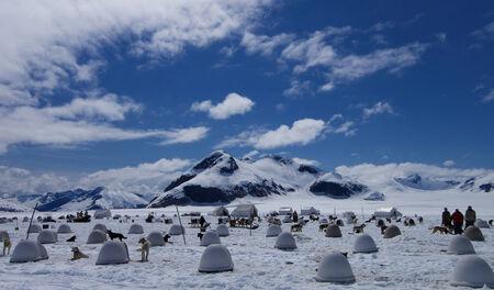 Dog and crew quarters for multiple dog sled team on Alaskan Glacier