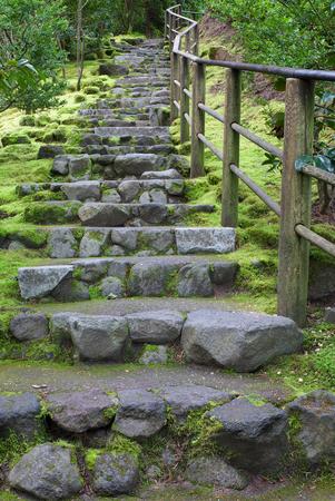 Long outdoor stone staircase at Asian Garden