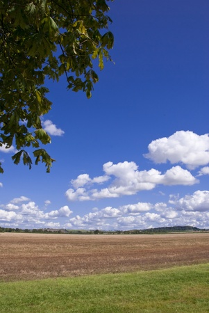 Landscape of countryside under a summer sky
