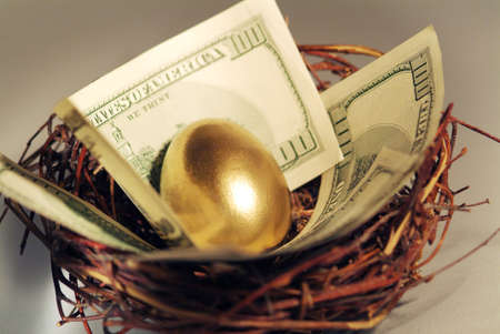 midas: Golden egg and money in a real nest. Shallow focus. Stock Photo