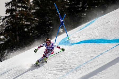 1st place: BANSKO, BULGARIA -  MARCH  2, 2015: Anna Fenninger (AUT)  takes 1st place during the Audi FIS Alpine Ski World Cup Ladies Super G on MARCH  2, 2015 in Bansko, Bulgaria