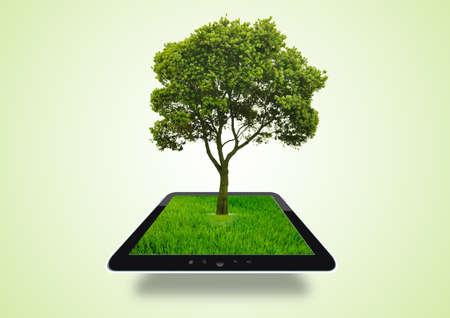 Green Background tree eco Stock Photo - 17995061