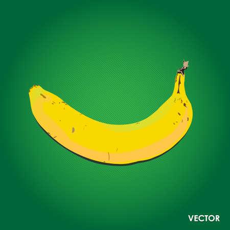 plantain: Vector ripe banana isolated on green background Illustration