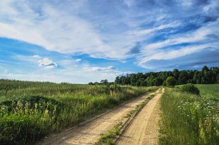 pastureland: Field landscape with village door and deep blue sky