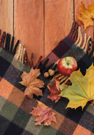 vertical orientation: Autumn still life with apple, maple leaves and acorns on a plaid. Wood background. vertical orientation