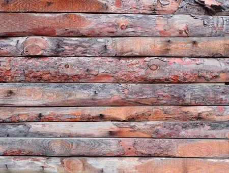 untreated: Untreated wood panel background, rough timber surface.