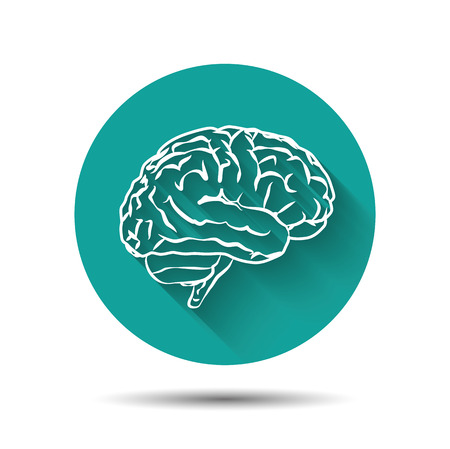 Human brain vector icon flat illustraton with shadow Ilustração