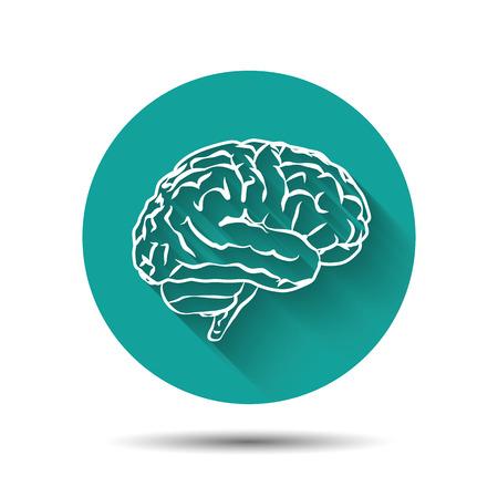 cerebro blanco y negro: Icono de vector Cerebro humano illustraton plana con la sombra