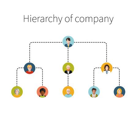 organigrama: Jerarquía de empresa ilustración plana aislado Vectores