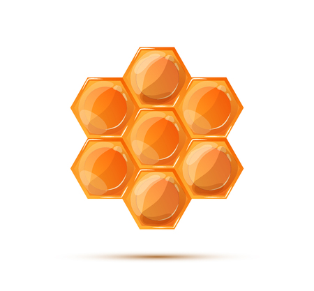 wax glossy: Bright glossy honeycomb with shadow isolated on white