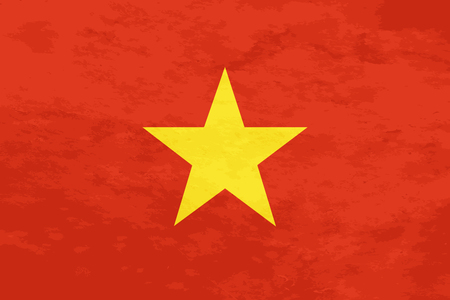 True proportions Vietnam flag with grunge texture