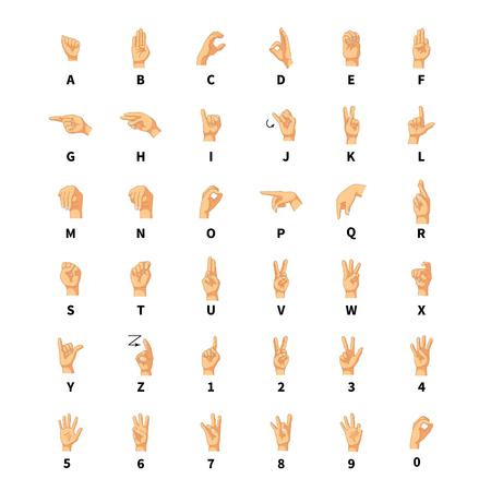 Sign language interpreter, latin alphabet signs isolated on white