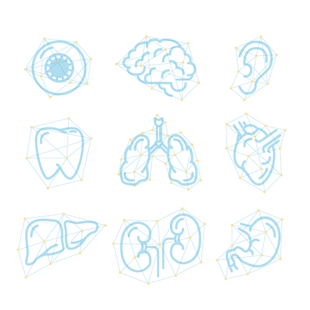 Futuristic outline icons of human organs on white