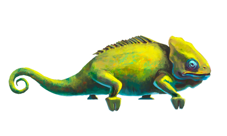 chamaeleo: Reslistic cute green chameleon isolated on white