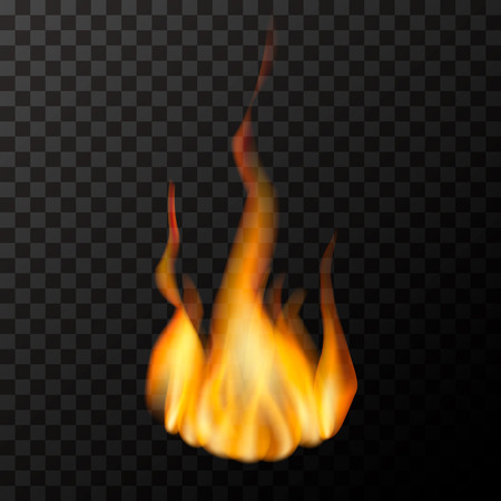 Bright fire flame on transparent background