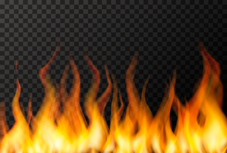 Wall of bright fire flame on transparent background