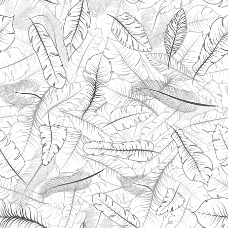A lot of different exotic feathers, seamless pattern on white