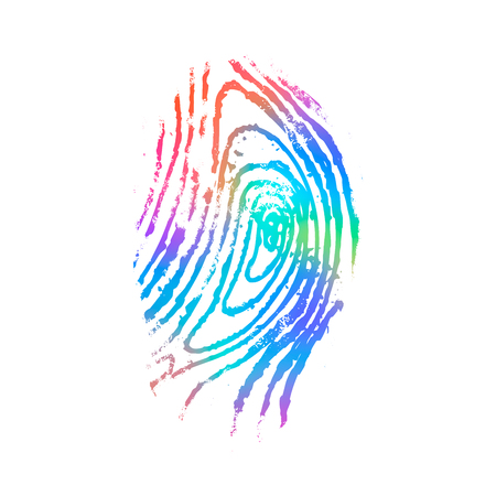 Detailed fingerprint in holographic colours isolated on white Banque d'images - 123014819