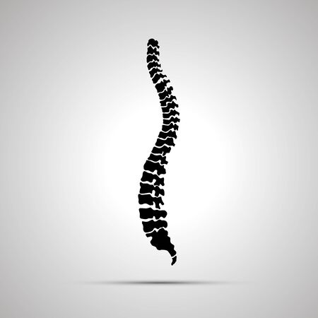 Detailed human spine, simple black icon
