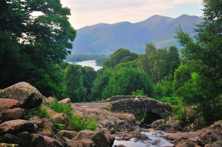 Stream,stone bridge and a Lake  Stock Photo - 21409461