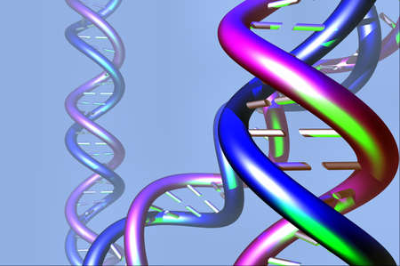 DNA molecule twisted chain model Stock Photo - 9749669