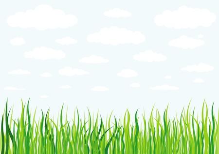 fű felhők és az ég háttere