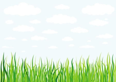 grass clouds and sky background Stock Vector - 15825516