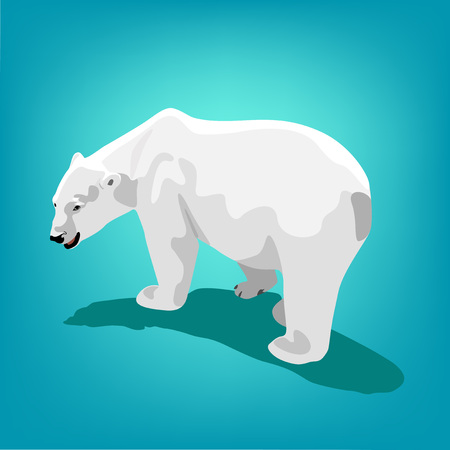 illustration of polar bear on blue background.