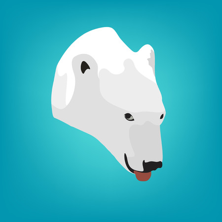 tundra: illustration polar bears head on a blue background.