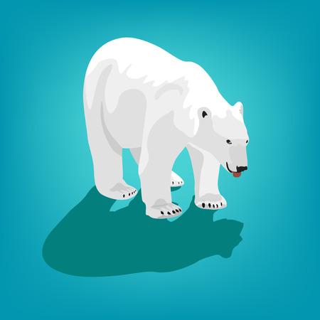 tundra: illustration of polar bear on blue background.
