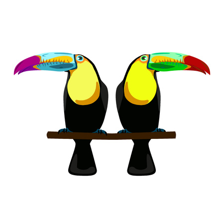 tucan: illustration of two toucans on white background