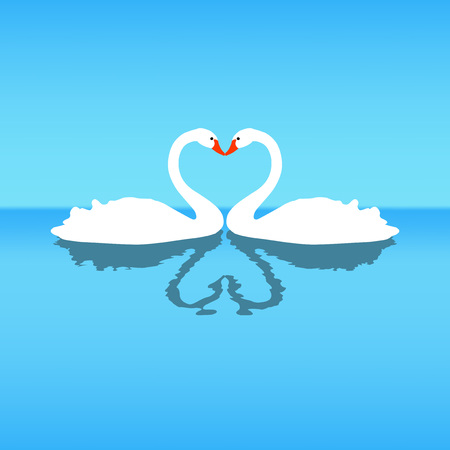swans: illustration of two lovers swans.