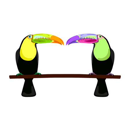 feathery: illustration of two toucans on white background