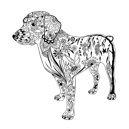 fauna: Patterned dog drawing. Hand Drawn doodle vector. Illustration